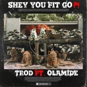 Trod Ft. Olamide - Shey You Go Fit?